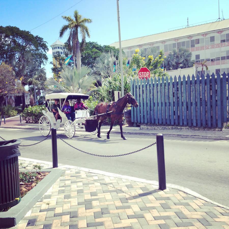 街を走る馬車