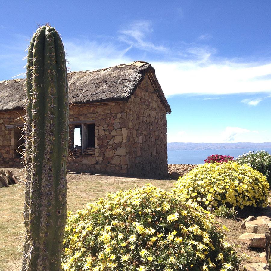 丘の上の小屋