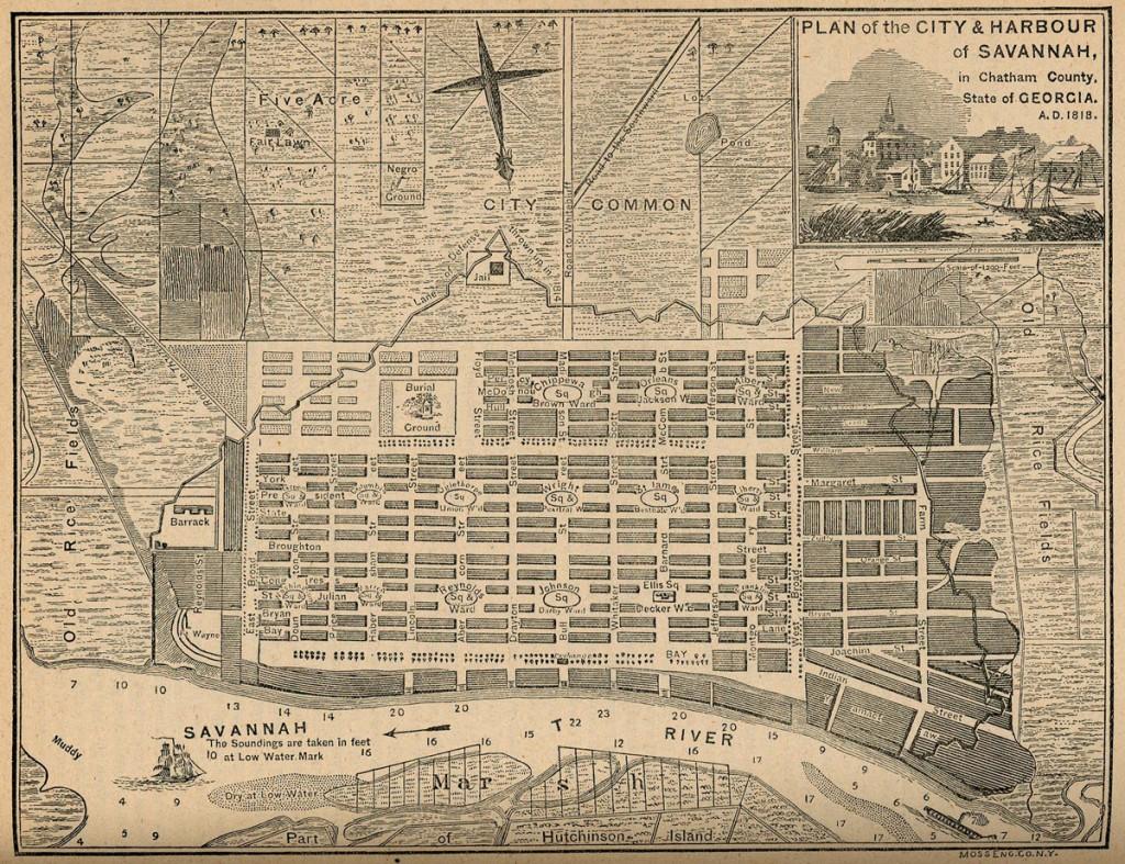 サバンナの地図