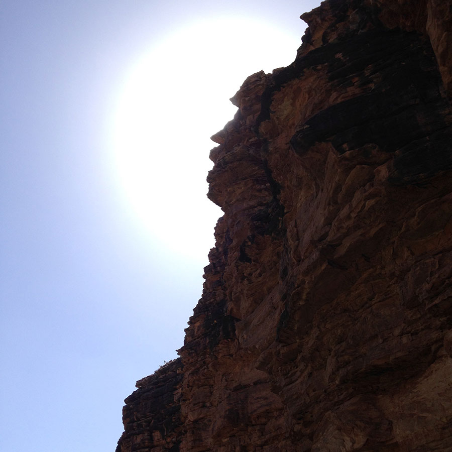 引き返す頃には高い太陽。