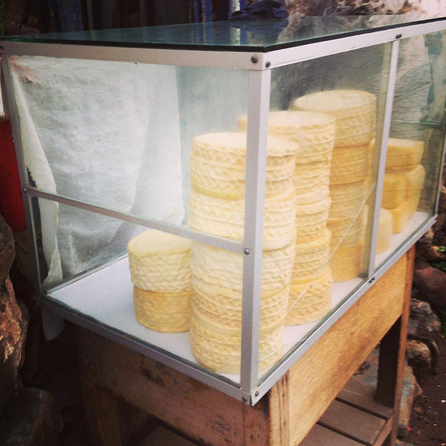 ショーケースのチーズ