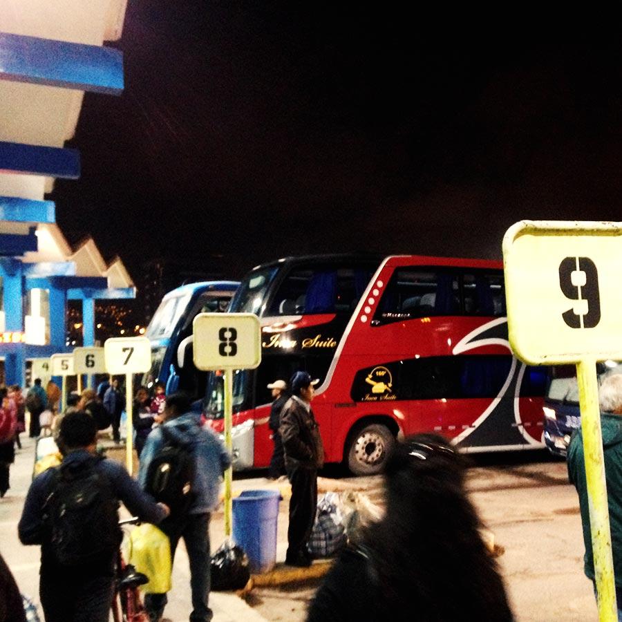 駐車場に泊まるバス達。