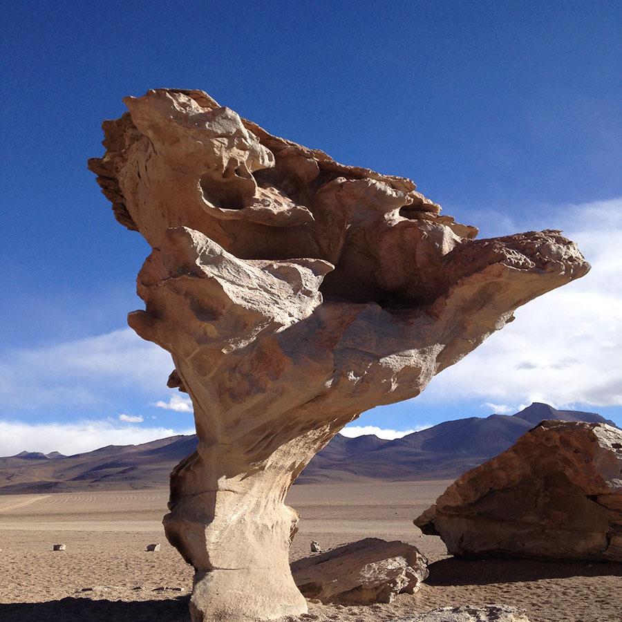 ウユニ湖の奇岩