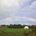 空港野宿からのイースター島!そこは南国の楽園。