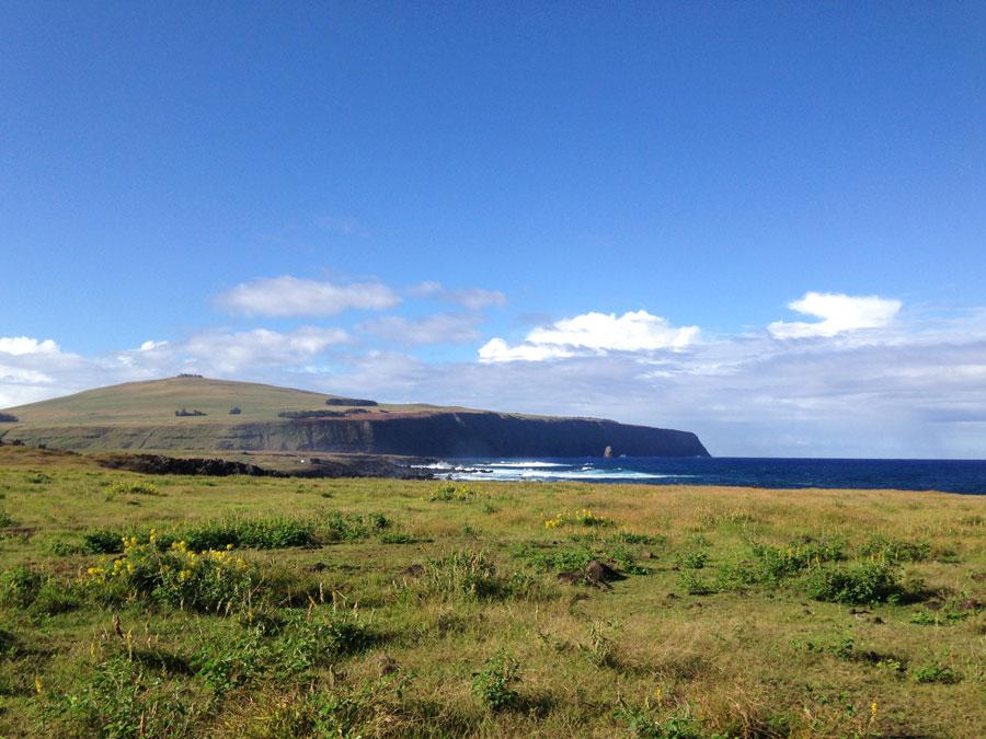大自然あふれるイースター島。