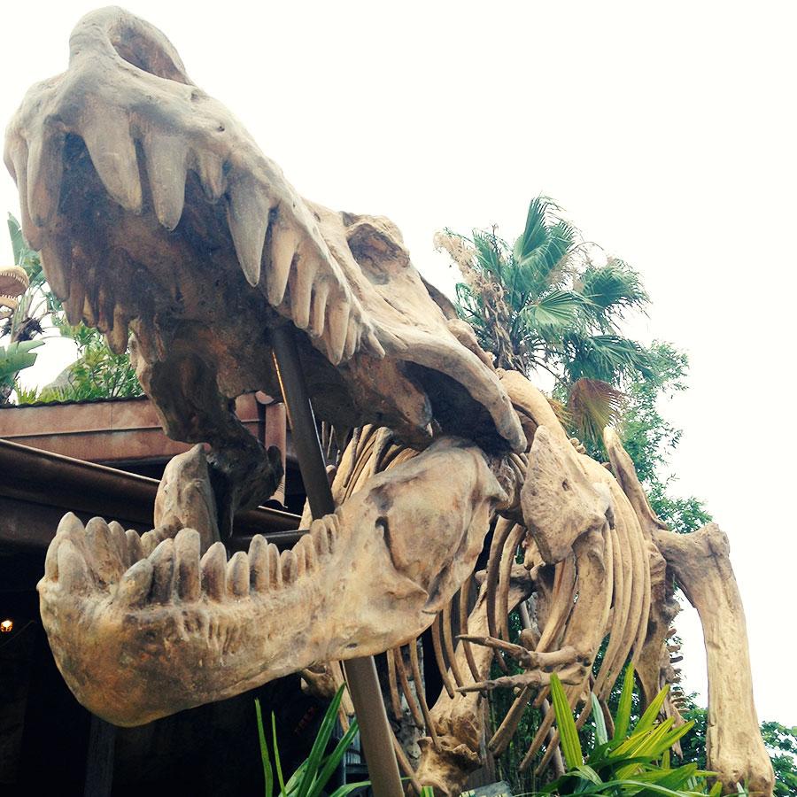 ジュラシックパークの恐竜とにらめっこ。