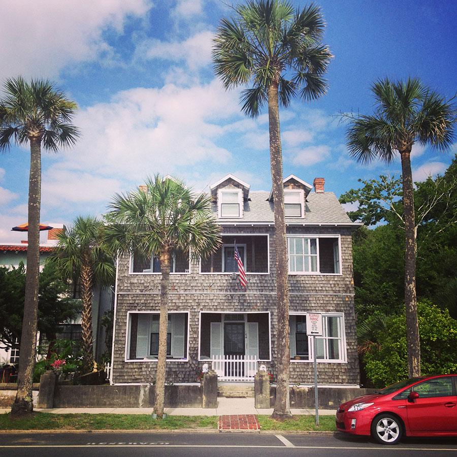 海辺の家。ヤシの木。