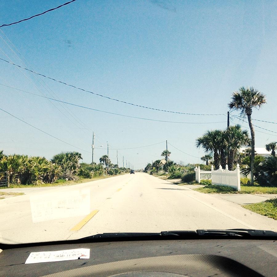 サバンナまでの道にて。
