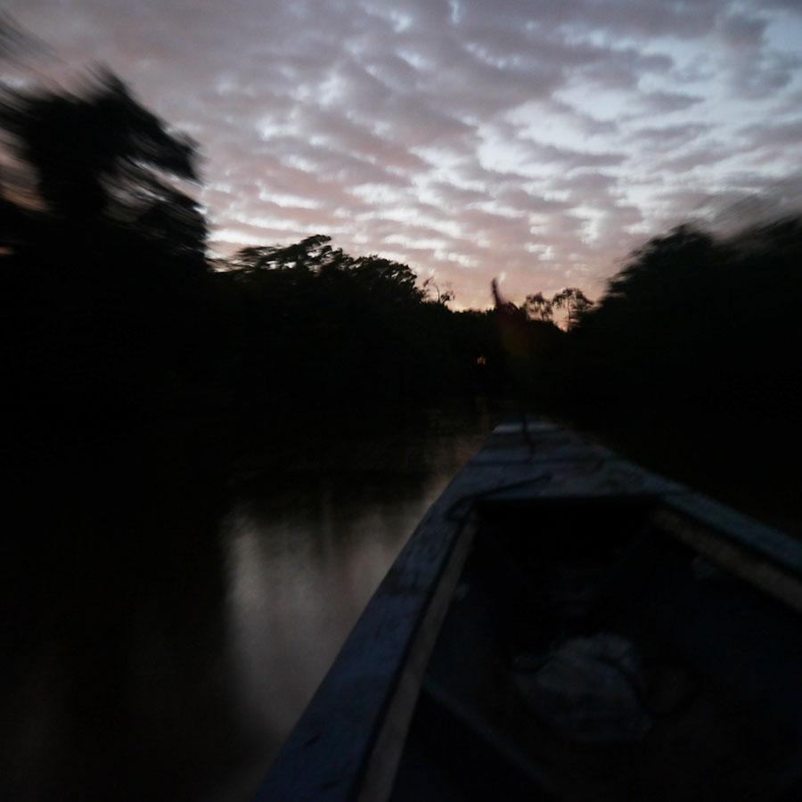 早朝のアマゾン川を船で行く。